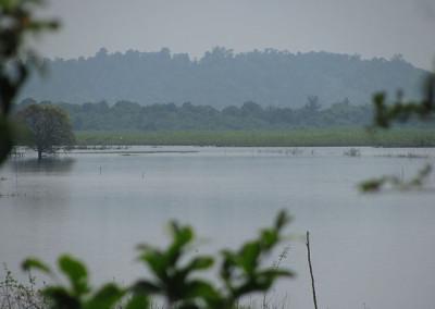 Mekong Kratie